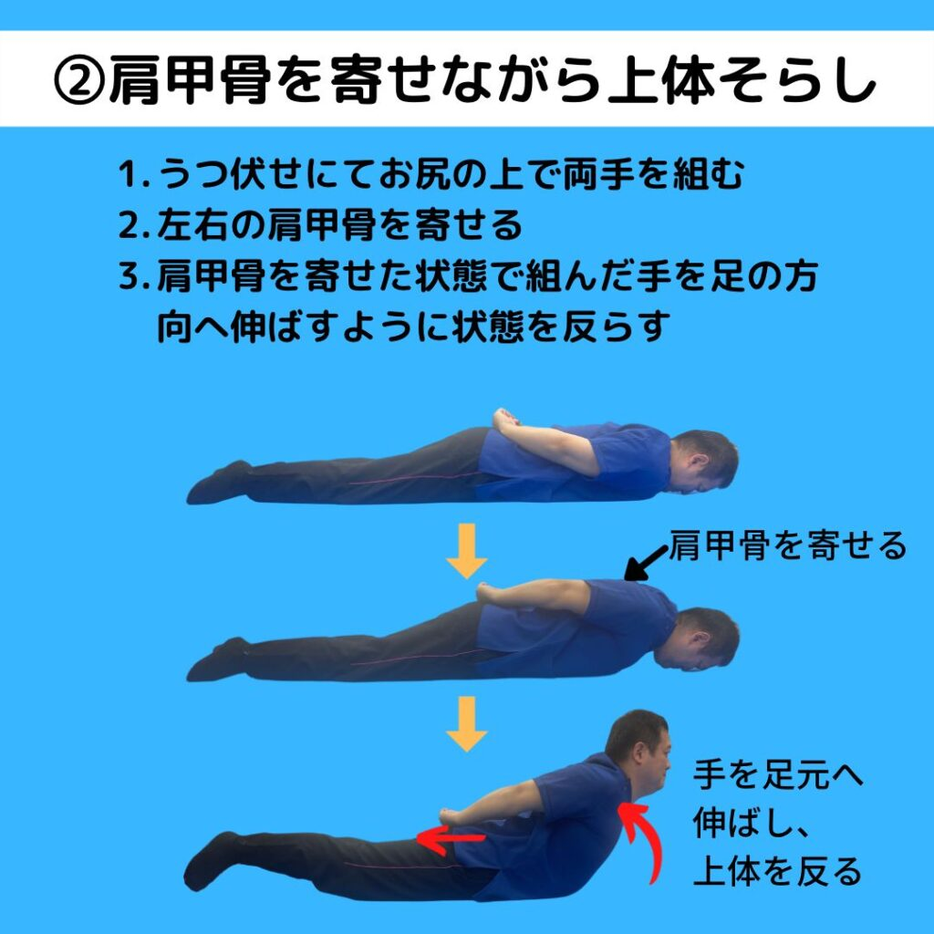 背中の筋肉を鍛え猫背を予防する背筋運動の方法です。うつ伏せでお尻の後ろで手を組み、肩甲骨を寄せた状態から上体そらしをしましょう。