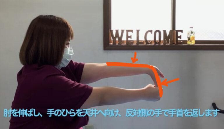 手指屈筋群のストレッチ姿勢(矢状面)