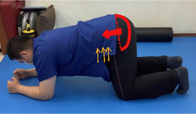 骨盤底筋群の収縮を得るエクササイズ