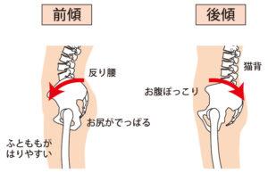 骨盤前傾と骨盤後傾の動きについて