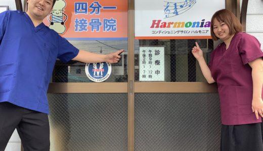 Harmonia(ハルモニア) のブログへようこそ!