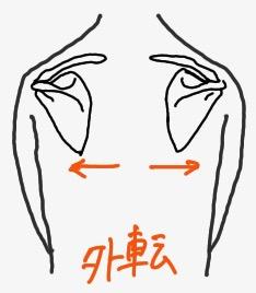 肩甲骨外転の動き